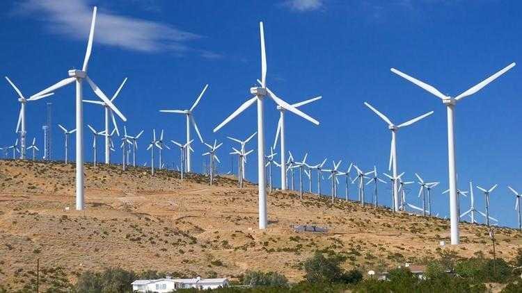 Rüzgar Gülü Fiyatları Ve Genel Analizler